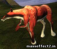 космолошадь или космокорова